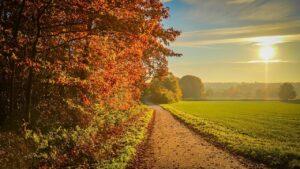sunset, autumn, landscape-2805693.jpg